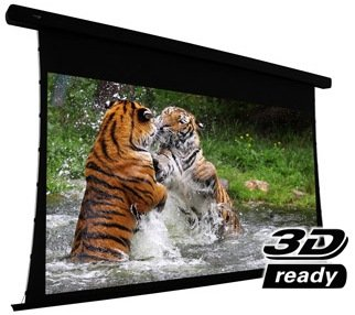 EluneVision Reference Studio 4K Tab-Tensioned Motorized Screen